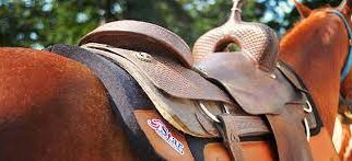 Know if Saddle Pad is needed for your horse